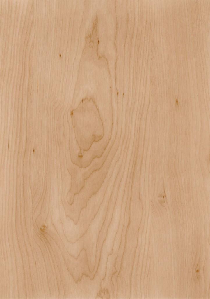 Birch Sample